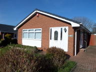 3 bedroom Detached Bungalow to rent in Hurstwood Road...