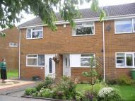 Terraced house to rent in Witton Drive, Spennymoor...