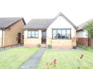 Detached Bungalow to rent in Gray Avenue, Hesleden...