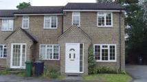 3 bed house to rent in Maybrook Chineham