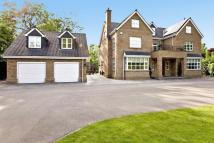 7 bed Detached house in Mere Road...