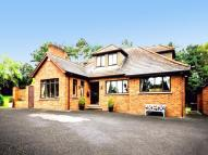 Detached Bungalow for sale in Dromore Road...