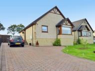 3 bed Detached Bungalow for sale in Springbank View, Plains...