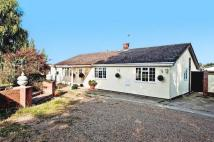 Detached Bungalow in Point Clear Road...