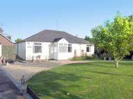 3 bedroom Detached Bungalow for sale in Grove Crescent...