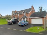 4 bed Detached property in The Paddocks, COLERAINE...