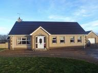 Detached house for sale in Altikeeragh Road...