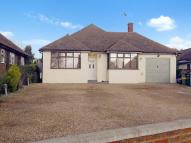 Detached Bungalow for sale in Heath Road, MAIDSTONE...