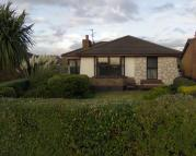 Detached Bungalow in Strangford View...