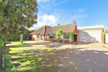 4 bedroom Detached Bungalow in Hithermoor Road...