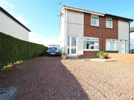 2 bedroom semi detached property for sale in Mauldslie Place, Ashgill...