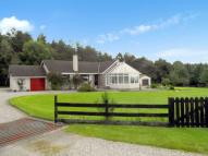 Detached Bungalow for sale in East Lamington, TAIN...
