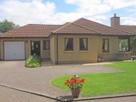 Detached Bungalow in Woodside Park...