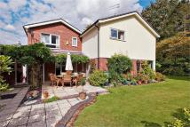 Detached house for sale in London Road, Harleston...