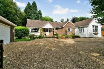 Detached Bungalow in Old Bisley Road, Frimley...