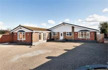4 bed Detached Bungalow in Heath Road, Sandbach...