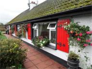 Detached property in Cardy Road, Greyabbey...