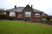 Detached Bungalow for sale in Campbell Street, Darvel...
