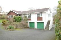 Detached Bungalow in St Anthonys Way...