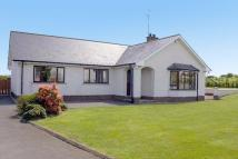 Detached Bungalow for sale in Drumarkin Road...