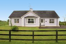Detached Bungalow for sale in Loughmacrory Road...