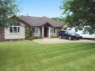 Detached Bungalow for sale in Liddesdale Crescent...
