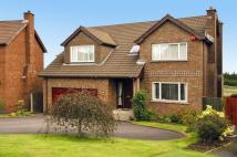 5 bed Detached house for sale in Beechfield Avenue...