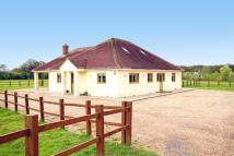 Detached Bungalow in Pluckley, ASHFORD, Kent