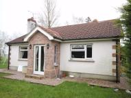 Detached Bungalow for sale in Derrycrin Road...