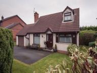 Detached Bungalow for sale in Forest Hill, Conlig...