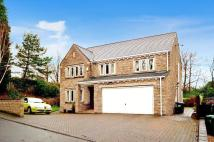 Sunny Bank Woods Detached house for sale