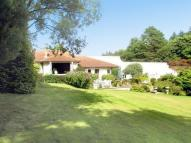 Detached house for sale in Hindhead Road, HASLEMERE...