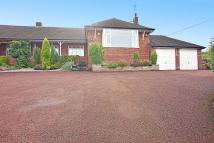 Semi-Detached Bungalow for sale in Acton Lane, Acton Bridge...