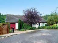 3 bed Detached Bungalow for sale in Carronview, Carronbridge...