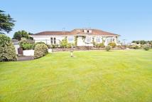 Detached Bungalow in Strete, DARTMOUTH, Devon