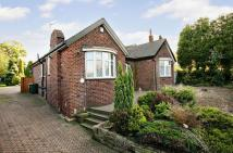 Detached Bungalow for sale in Rockingham Road, Swinton...