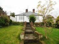 Detached Bungalow for sale in Merllyn Lane, BAGILLT...