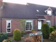 Semi-Detached Bungalow for sale in Adare Court, DUNGANNON...