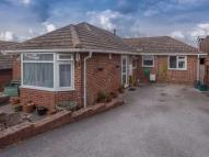 4 bed Detached Bungalow in Darlton Drive, Arnold...