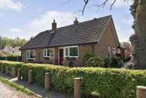 Detached Bungalow for sale in Blackheath Road...