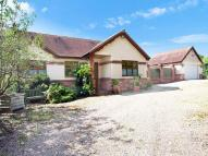 Detached house for sale in Stormonts Way...