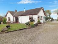 Detached Bungalow for sale in St Patricks Road...