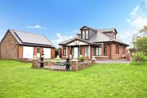 Detached Bungalow for sale in Werneth Low Road, HYDE...