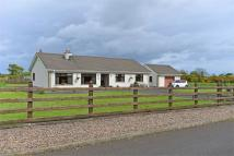 3 bedroom Detached Bungalow for sale in Knocknougher Road...