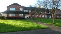 Flat in Ruskin Court...
