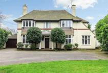4 bed Detached house for sale in Hall Road, Rochford...