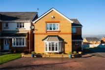 Detached house for sale in Maes Cefn Mabley...