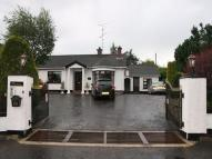 Detached home for sale in Blackfort Road, OMAGH...