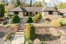 3 bed Detached Bungalow in Rucklers Lane...