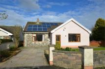 3 bedroom Detached Bungalow in Cold Blow, Cold Blow...